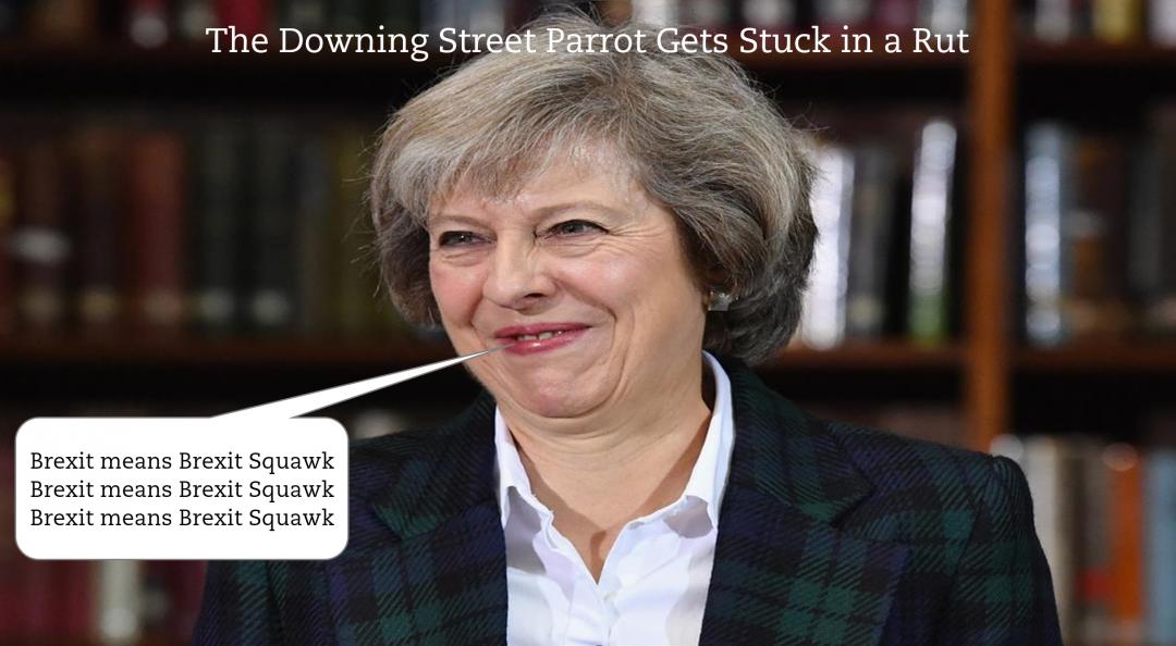 Downing Street Parrott